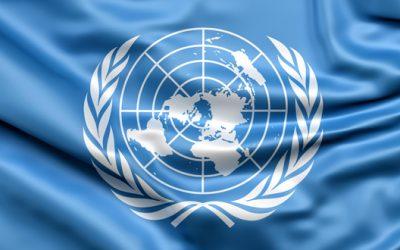 Bandiera dell'ONU
