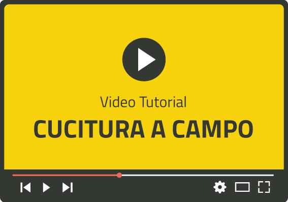 Video cucitura a campo